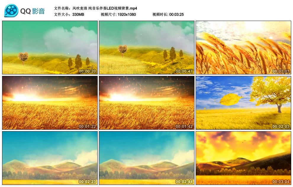 风吹麦浪 纯音乐伴奏LED视频背景.mp4_thumbs_2019.05.30.23_34_10.jpg